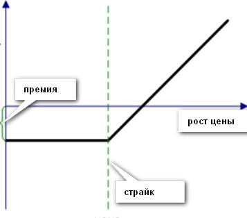 Pattern (18).jpg